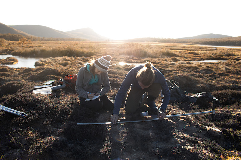 two students in a field doing research