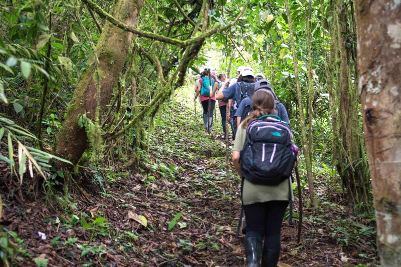 students hiking in a jungle